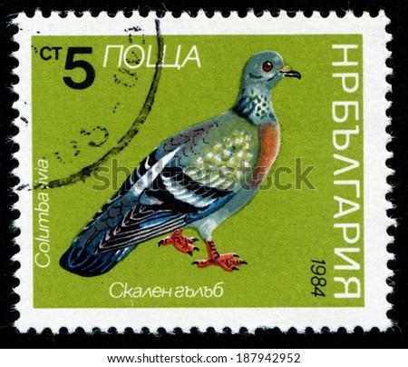 BULGARIA - CIRCA 1984: A Stamp printed in BULGARIA shows bird, circa 1984 - stock photo