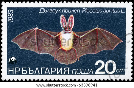 """BULGARIA - CIRCA 1983: A Stamp printed in BULGARIA shows image of a Long-eared Bat with the description """"Plecotus auritus"""" from the series """"Various bats and rodents"""", circa 1983 - stock photo"""