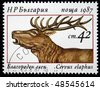 BULGARIA - CIRCA 1987: A stamp printed in Bulgaria shows Red Deer - Cervus elaphus, circa 1987 - stock photo