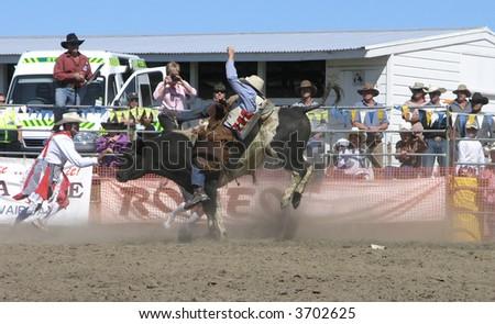 Bull Rider going Down - stock photo