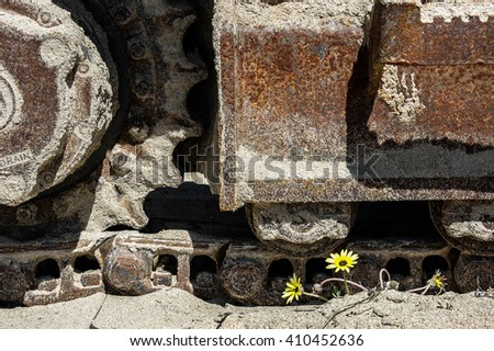 Bulldozer tracks on sand beach with flowers - stock photo