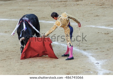 bullfight, traditional celebration in a Spanish bullring