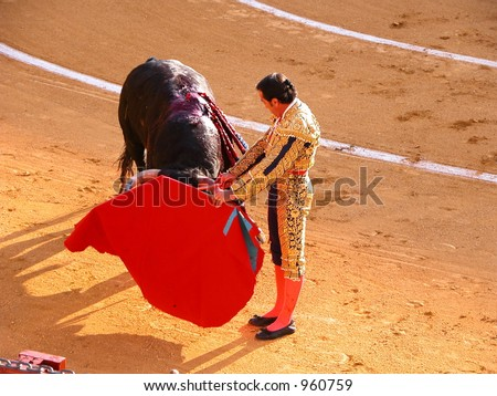 Bullfighter with red cape guides bull in an elegant pass