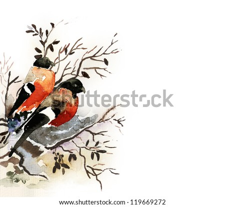 Bullfinches - stock photo