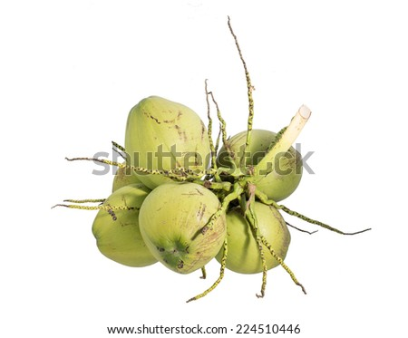 Bunch coconut fruit, Isolated on white background - stock photo