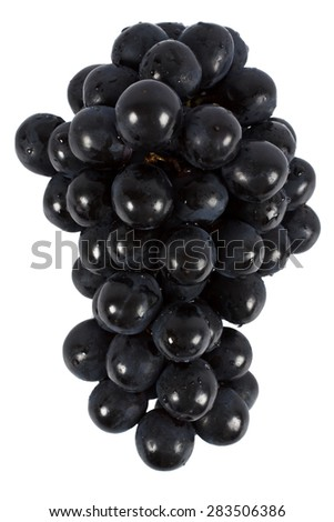 Bunch of black grapes isolated on white background. - stock photo