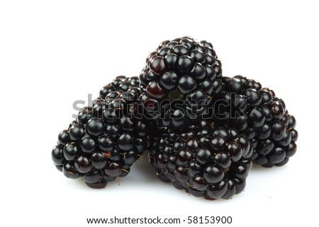 bunch of blackberries on a white background - stock photo