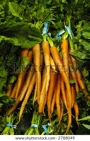Bunch of carrots at a market place - stock photo