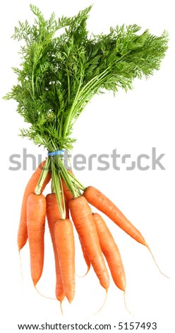 bunch of carrots, isolated - stock photo