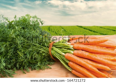 Bunch of carrots on wooden table against farmland - stock photo