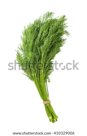 bunch of dill on white background - stock photo