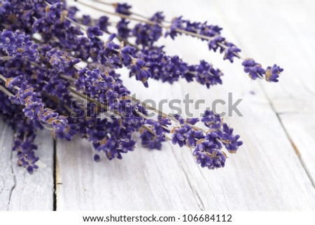 Bunch of dried lavender - stock photo