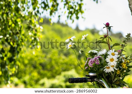 Bunch of flowers in a basket of bike with the handlebars in the foreground on a blurry green garden background