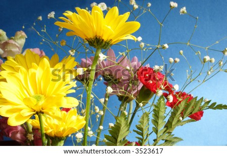 Bunch of flowers with blue background - stock photo