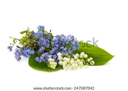 Bunch of forget-me-not and lily of the valley on white background