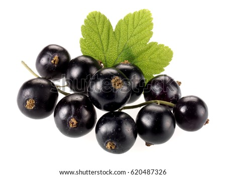 fruit display cassis fruit