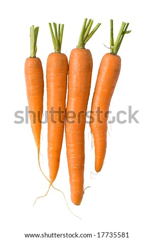 Bunch of fresh carrots isolated on white background. Clipping path included to replace background. - stock photo