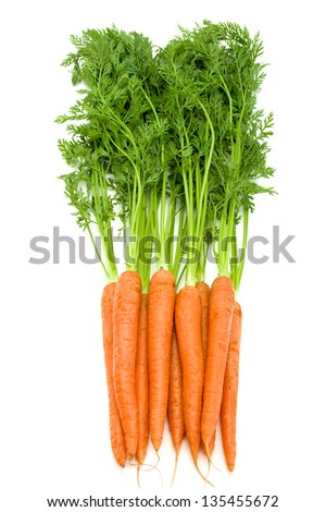 Bunch of fresh  carrots with green tops isolated on white - stock photo