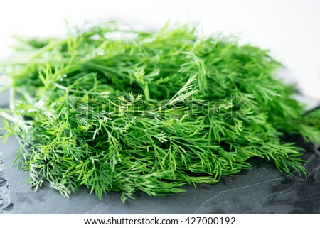 Bunch of fresh dill on a table.