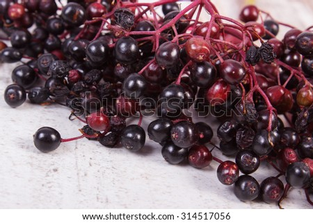 Bunch of fresh elderberry on old rustic wooden background, healthy food, nutrition and alternative medicine - stock photo