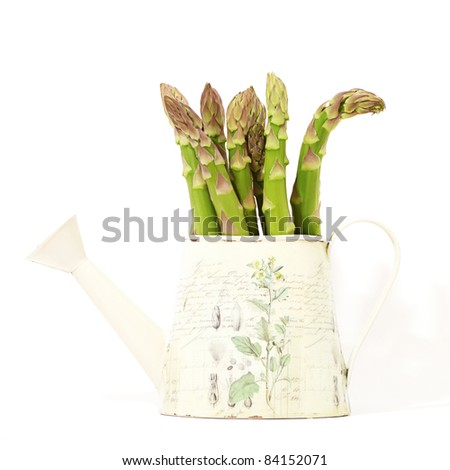 Bunch of fresh green asparagus in a watering-can isolated on white