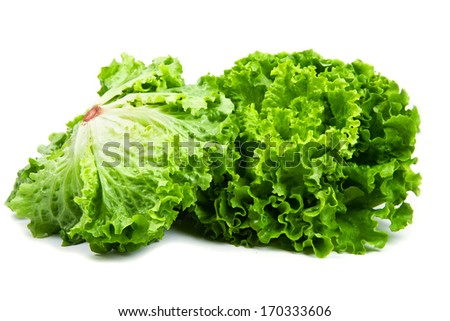 bunch of fresh green salad isolated over white  - stock photo