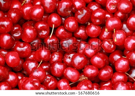 bunch of fresh, juicy, ripe cherries - stock photo
