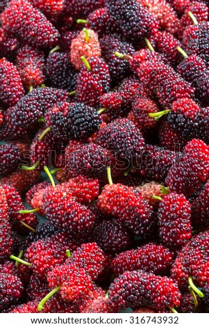 bunch of fresh mulberries displayed  in a dish showing dark red fruit and green stems - stock photo
