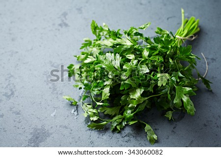 Bunch of fresh organic parsley - stock photo