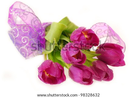 bunch of fresh purple tulips with dew drops lying on  white background - stock photo