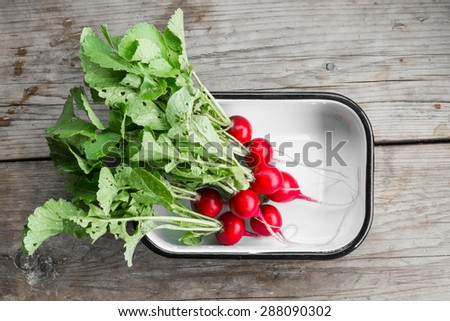 Bunch of fresh radish in bowl, on the wooden table