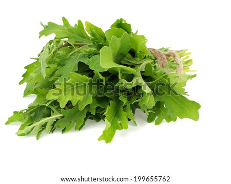 Bunch of fresh rucola on a white background - stock photo