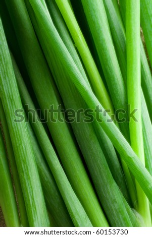 Bunch of fresh spring onions,closeup - stock photo