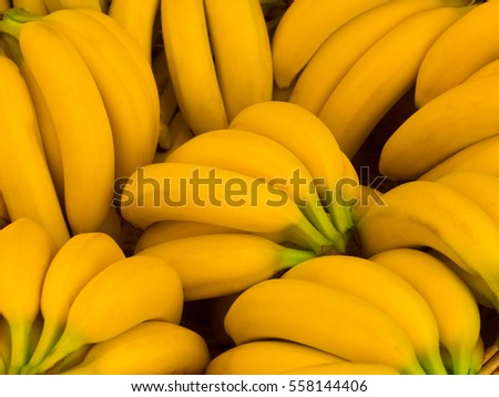 Bunch of fresh yellow bananas