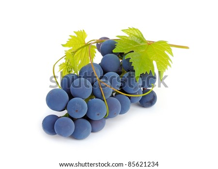 Bunch of grapes and vine leaves on a white background - stock photo