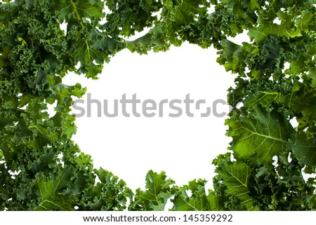 Bunch of kale with a white background in the middle