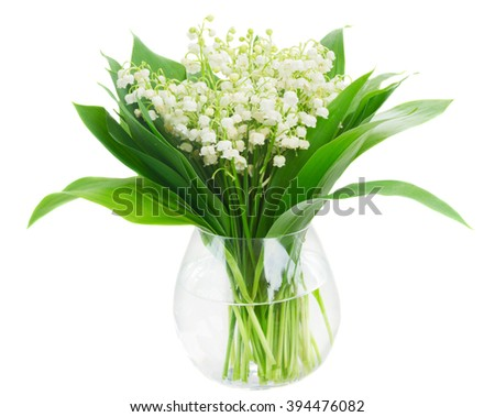 Bunch of Lilly of valley flowers in glass vase isolated on white background - stock photo