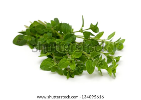 bunch of marjoram isolated on white background - stock photo