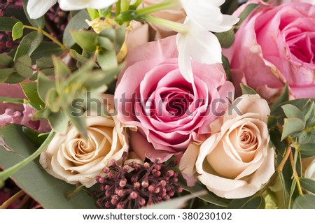 Bunch of multicolor flowers. Delicate pastel shades.