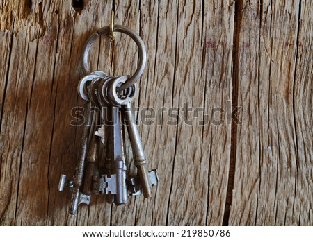 Bunch of old keys hanging on wooden wall - stock photo