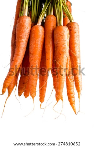 Bunch of Organic Carrots with Leaves. Isolated on White - stock photo