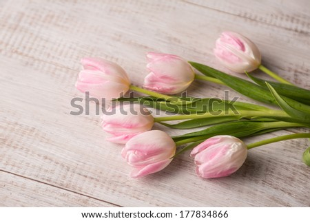 Bunch of pastel pink and white tulips on old wooden floor - stock photo