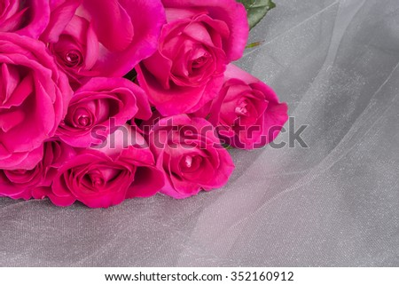 Bunch of Pink Roses on Grey Tulle Fabric  - stock photo