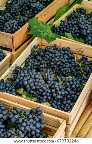 Bunch of purple grape in brown wooden box