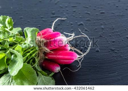 Bunch of radish on black background, fresh organic vegetables grown in ecological garden - stock photo
