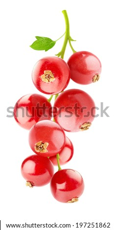 Bunch of red currant berries isolated on white - stock photo