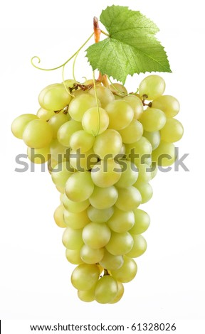 Bunch of ripe grapes on a white background - stock photo