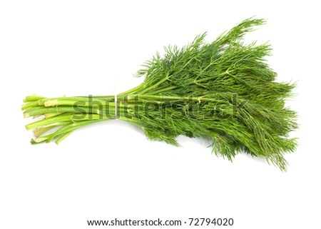 Bunch of ripe green dill isolated on white