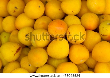BUNCH OF RIPPED YELLOW PLUMS