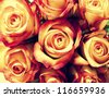 Bunch of roses retro style - stock photo